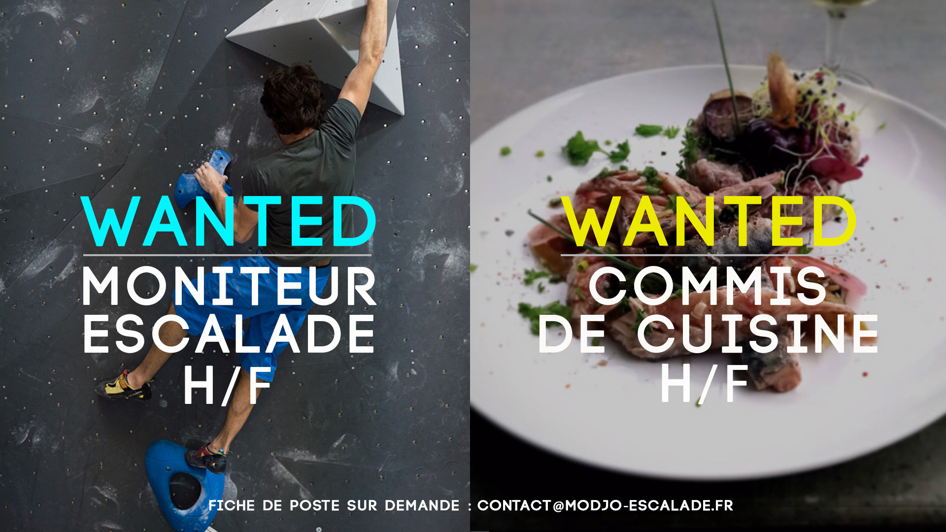 WANTED Commis Moniteur
